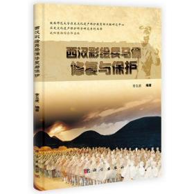 西汉彩绘兵马俑修复与保护 9787030394026