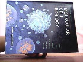 MOLECULAR CELL BIOLOGY分子细胞生物学