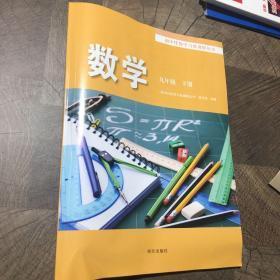 初中伴你学习新课程丛书. 数学. 九年级. 下册