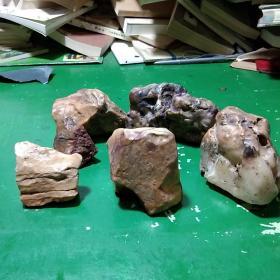 肉石,观赏石六块,大小不一,70-600克