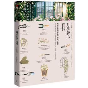 月季新手百科玫瑰月季的种植、修建、造型