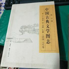 中国古典文学图志--宋、辽、西夏、金、回鹘、吐蕃、大理国、元代卷