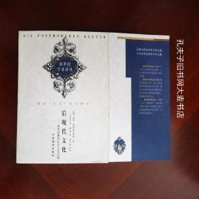 《后现代文化:技术发展的社会文化后果》  中央编译出版社