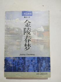 金陵春梦第八(8)大江东去