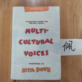 MULTI CULTURAL VOICES