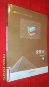 金魔方(上下)(李晓伟 著  敦煌文艺出版社)馆藏