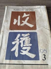 �堕��1981骞寸��3���荤��29��