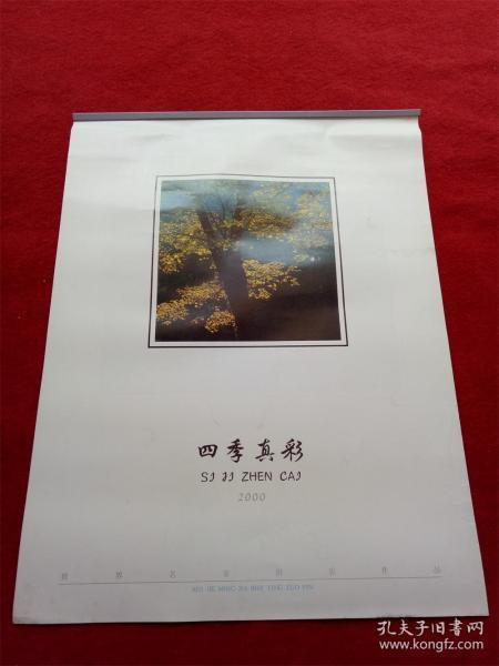 ���ф�惰������骞村��2000����瀛g��褰┿��12���� ����涓�����瀹舵����浣���