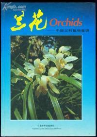 兰花-中国兰科植物集锦(中英文对照)(全彩图)  ORCHIDS 93年一版一印,大16K精装带原装护封,全铜版纸印刷全彩图