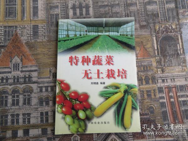 特种蔬菜无土栽培