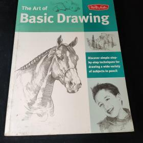 Art of Basic Drawing (Collector's Series)