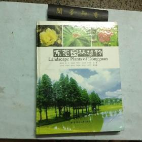 东莞园林植物