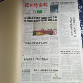 深圳特区报 2012年5月(11-20日)