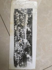 四川省遂宁中学校五五年秋高中十一班毕业留念