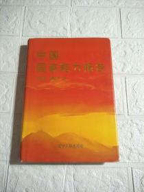 中国国家能力报告  精装本