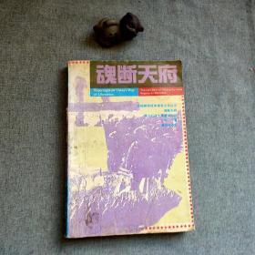 魂断天府:蒋介石在大陆最后时刻