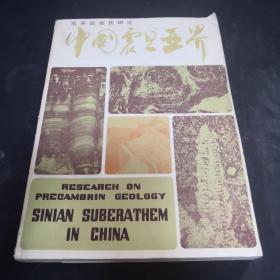 中国震旦亚界:前寒武地质研究(1980年1版1印)