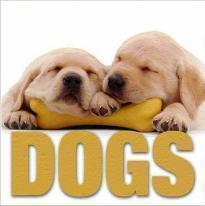Mini Cubebook Dogs