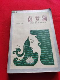 茵梦湖外国抒情小说选集之一