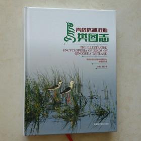 青格达湖湿地鸟类图志