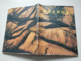 中国石油地质:鄂尔多斯盆地 【8开精装本】