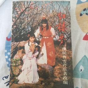 红楼梦 电视剧剧本小说