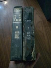 原色昆虫大图鉴(Ⅰ、II)蝶蛾篇、甲虫篇(2册合售,16开大厚本)有盒 日文原版    11架