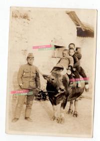 民国广东佛山老照片 日本侵华罪证,日军侵略者牵牛,牛背上是中国小朋友