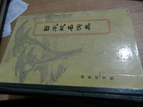 日本地名词典