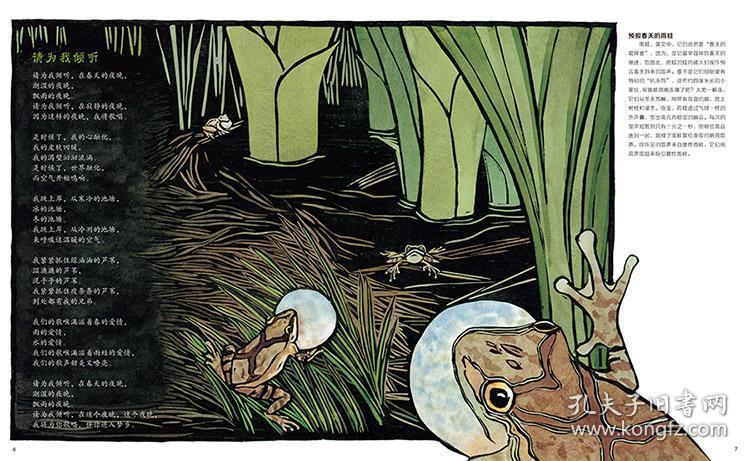池塘的细语请为我倾听儿童绘本科普百科科学绘本硬壳精装蒲公英童书馆