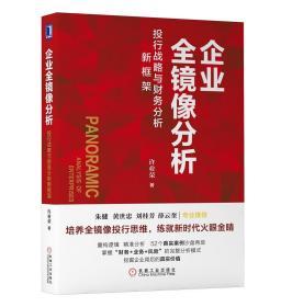 企业全镜像分析:投行战略与财务分析新框架