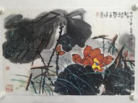 保真书画,福建名家郑大干国画佳作《香远益清》一幅,尺寸45.5×68cm