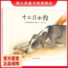 十二只小狗九儿温馨绘本动物绘本狗狗绘本汪星人绘本023456岁儿童绘本蒲公英童书馆