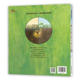 一棵橡树的两百年附赠610mm*508mm大尺寸年轮海报蒲公英童书馆