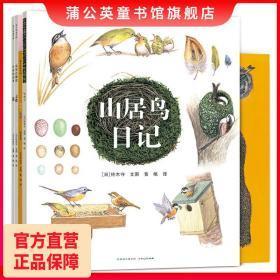 铃木守的鸟世界全4册儿童动物绘本你好山雀作者鸟巢的秘密鸟巢的智慧鸟巢的故事蒲公英童书馆