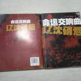 中国命运交响曲:辽沈硝烟