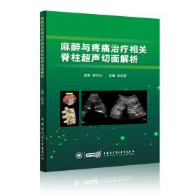 麻醉与疼痛治疗相关脊柱超声切面解析