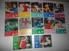 气功1996年 第1、2、3、4、5、6、7、8、9、10、11、12期合售