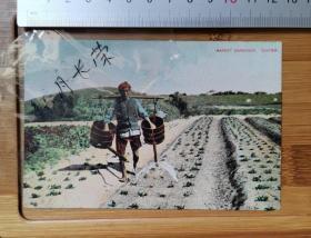 【古董级】正宗收藏级别老明信片  晚清时期  菜园  1908带邮票外文 百年文物