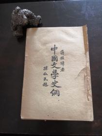 中国文学史纲 蒋鉴璋著  孙叔民题签 1929年10月出版 亚细亚书局