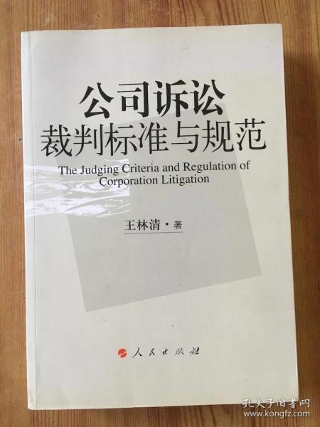 公司诉讼裁判标准与规范