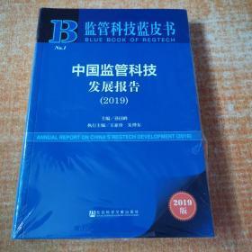 中国监管科技发展报告(2019)