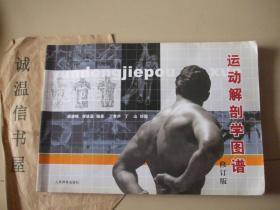 运动解剖学图谱 修订版