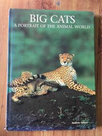 大猫)BIG CATS A PORTRAIT OF THE ANIMAL WORLD)正版 现货)精装