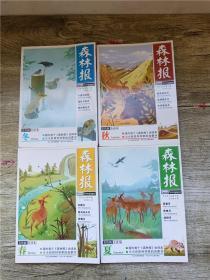 森林报 美绘版全译本【春夏秋冬 四本合售】