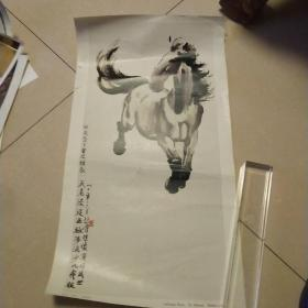 畫片,徐悲鴻奔馬,4開