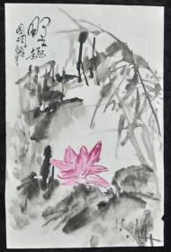 花鸟画7-35