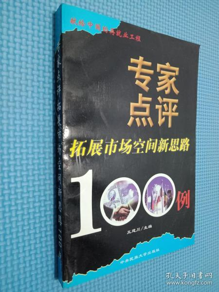 专家点评拓展市场空间新思路100例