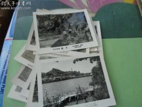 本店珍品之一上世纪50/60年代 老照片 -杭州西湖----16张