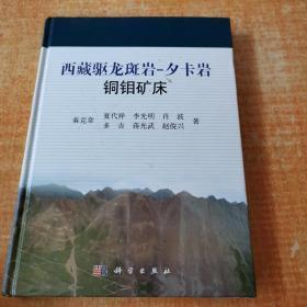 西藏驱龙斑岩-夕卡岩铜钼矿床